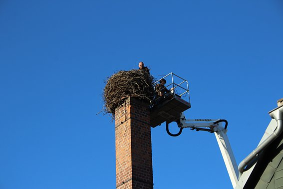 "Storchennest in Windehausen wurde ""saniert"""
